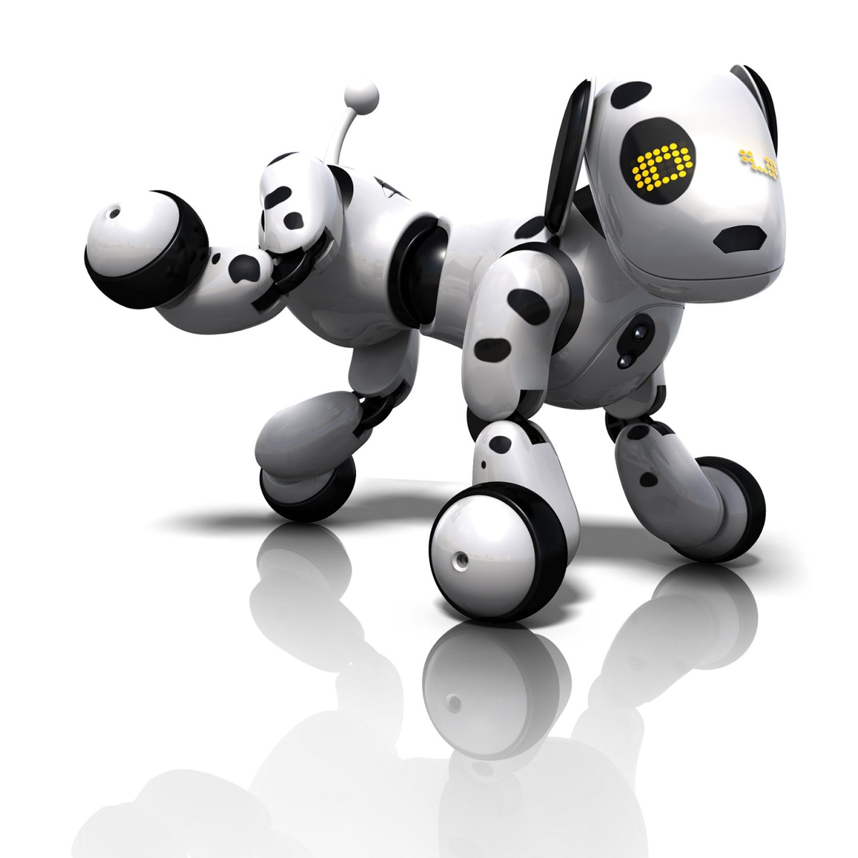 Zoomer_dog_dalmatian